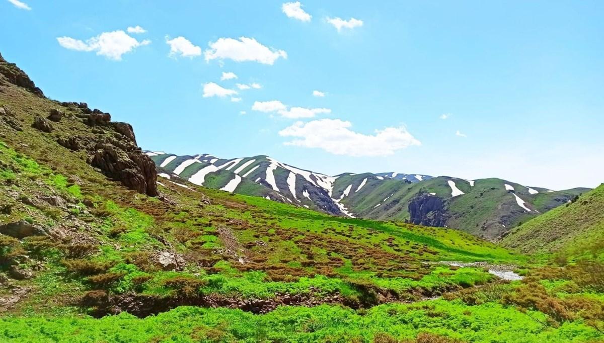 Spring festival in Şırnak plateaus where green and white meet