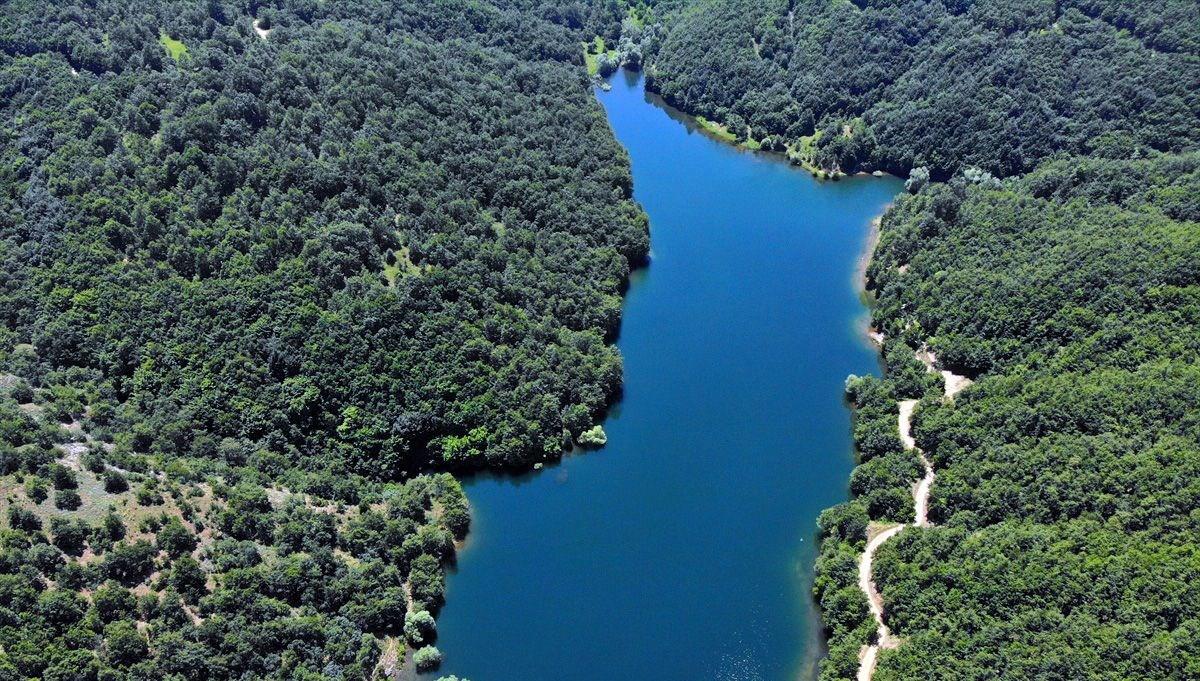 Bilecik'in gölet zengini adresi: Pazaryeri