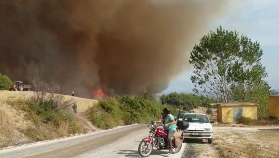 Osmaniye'de orman yangını çıktı, alevler evlere sıçradı - Flipboard
