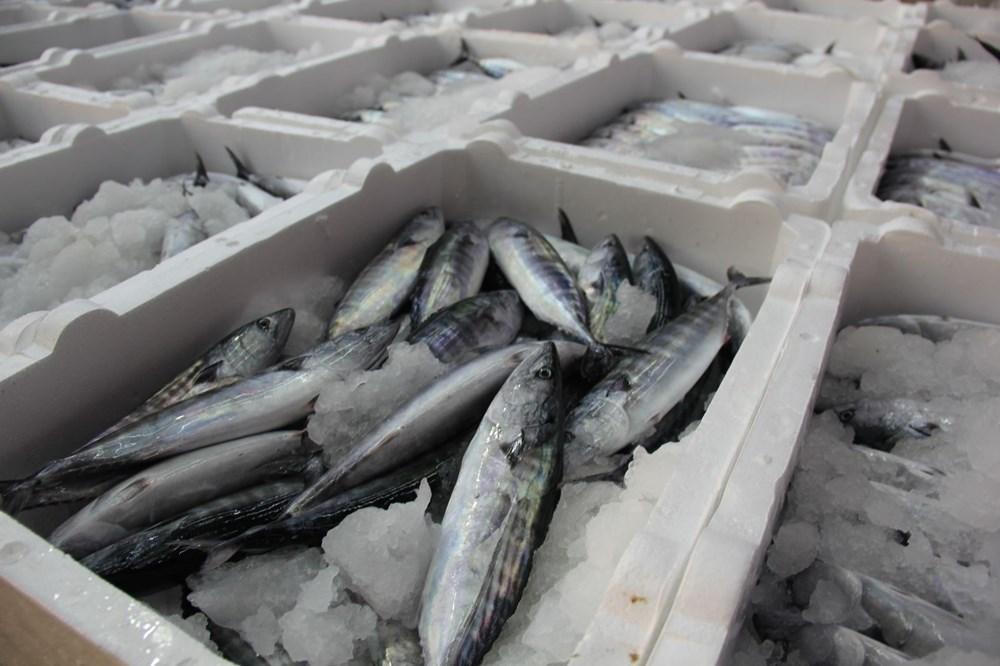 """Balıkçılar """"vira bismillah"""" dedi - 10"""