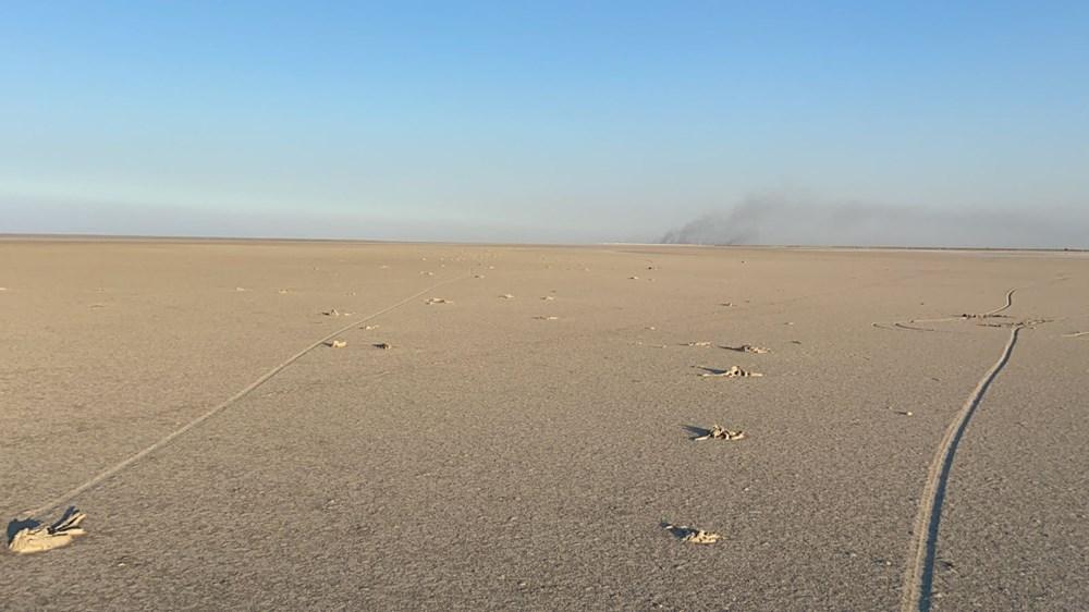 Tuz Gölü'nde toplu flamingo ölümleri: Soruşturma başlatıldı - 8