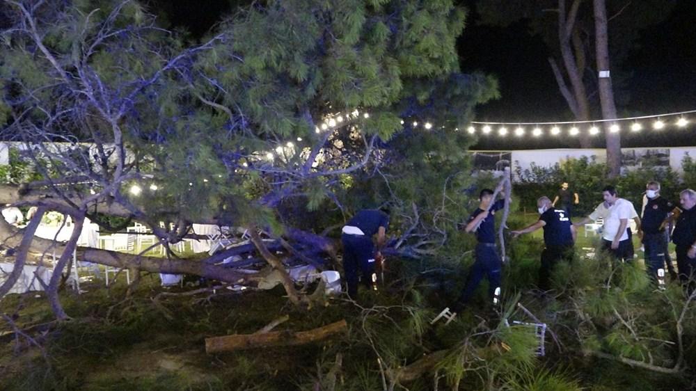 Antalya'da kır düğününde'ağaç' devrildi: 1 ölü - 3