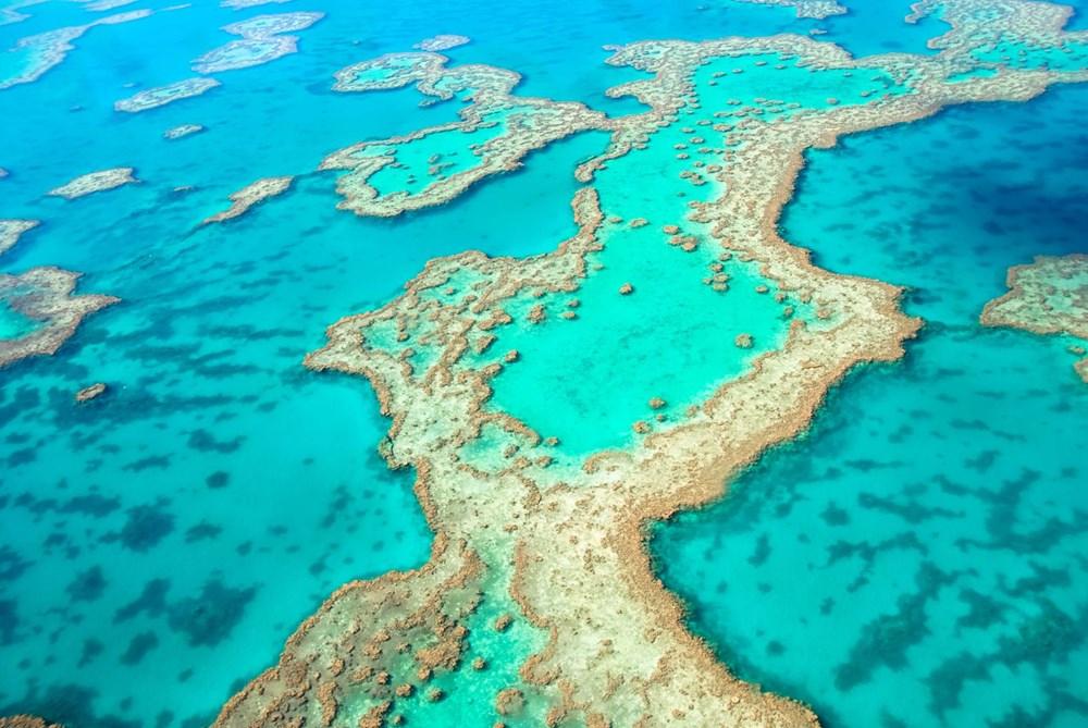 Büyük Set Resifi iklim değişikliği nedeniyle 2025'te yok olmaya başlayacak - 9