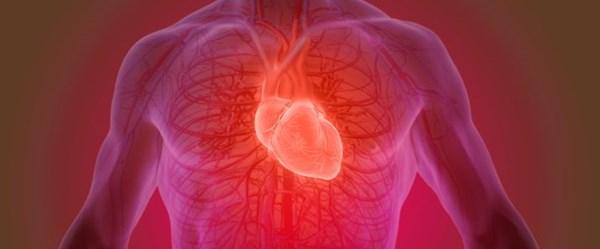 """Kalp ritmini ölçen """"akıllı tişört"""" geliştirildi"""