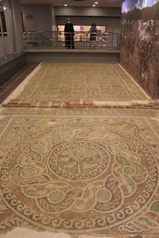 1800 yıllık elma mozaiği sergilenmeye başladı - 7
