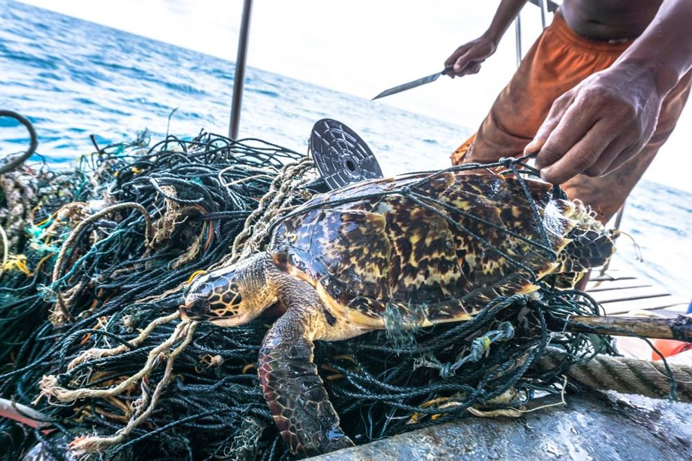 Plastik kirliliği Akdeniz'de kimyasal düzeylere ulaştı: Caretta carettalar ölüyor - 2