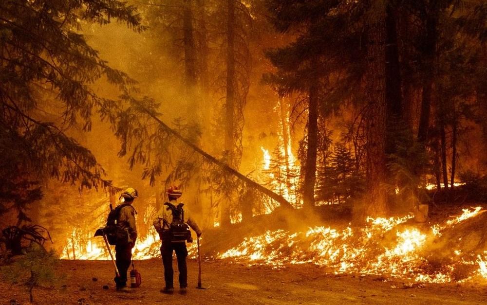California'da orman yangınları evleri küle çevirdi - 3