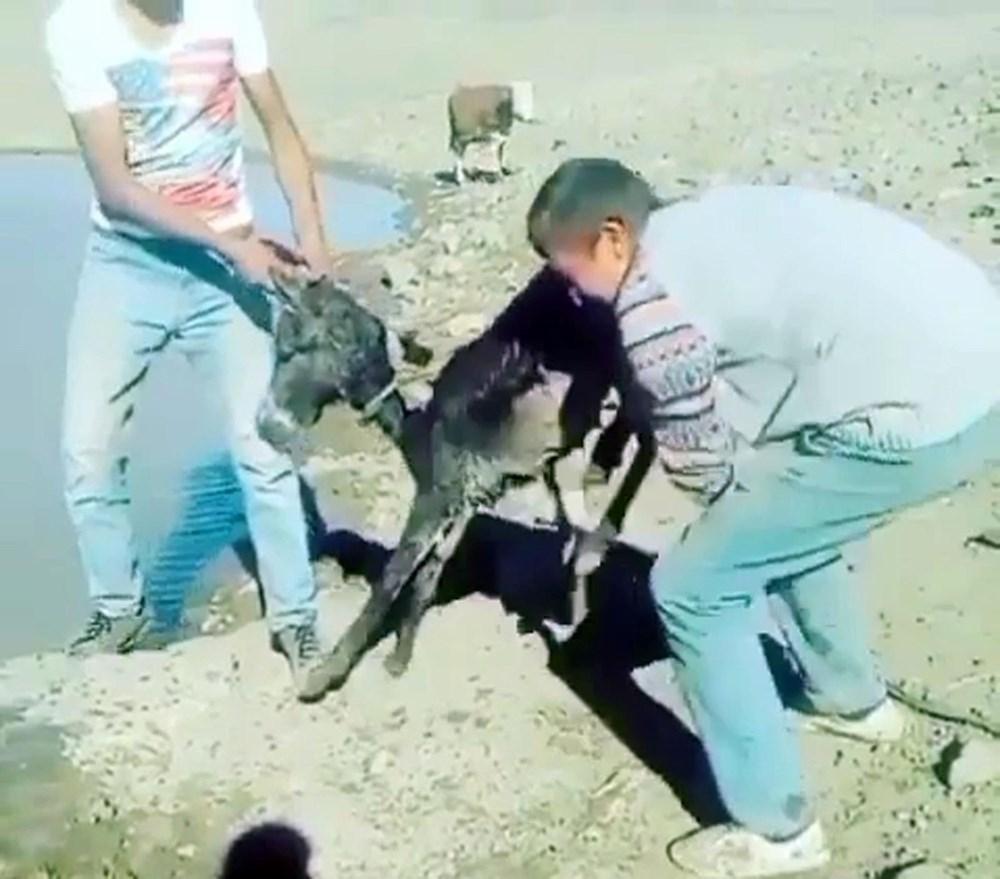 Sıpaya eziyet eden 2 kişiye 947'şer lira ceza - 6