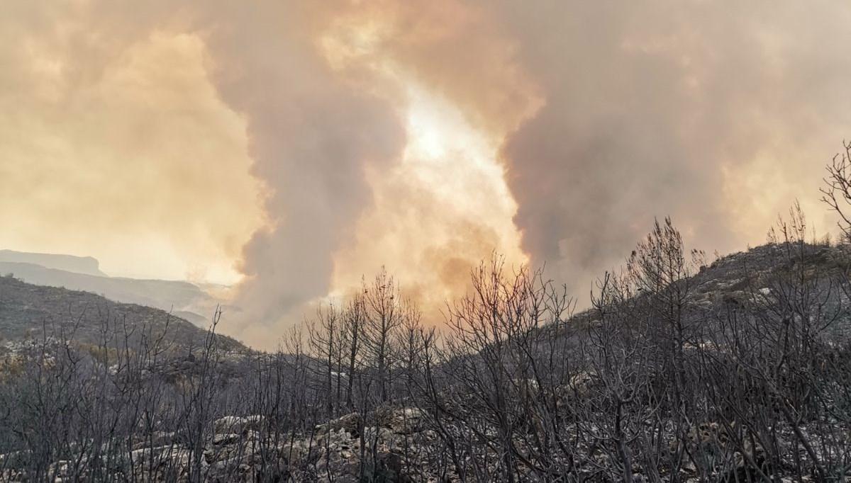 SON DAKİKA HABERİ: Manavgat'taki can kaybı 7'ye yükseldi