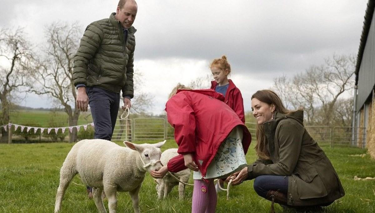 Prens William ile Kate Middleton'dan köy ziyareti: Traktör kullandılar kuzuları beslediler