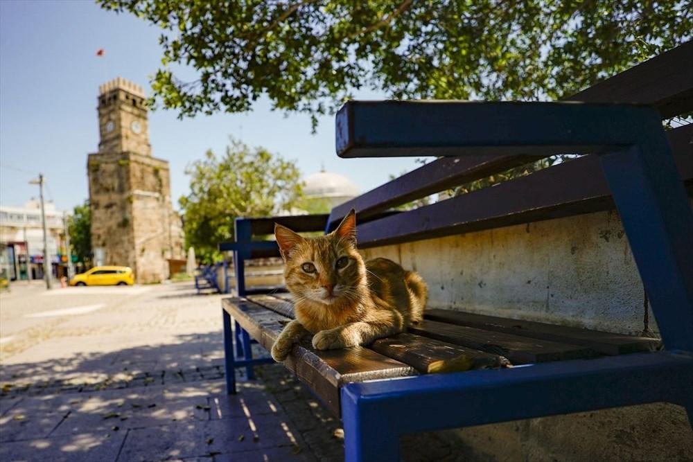 Antalya'nın geçmişe açılan kapısı 'Kaleiçi' - 15