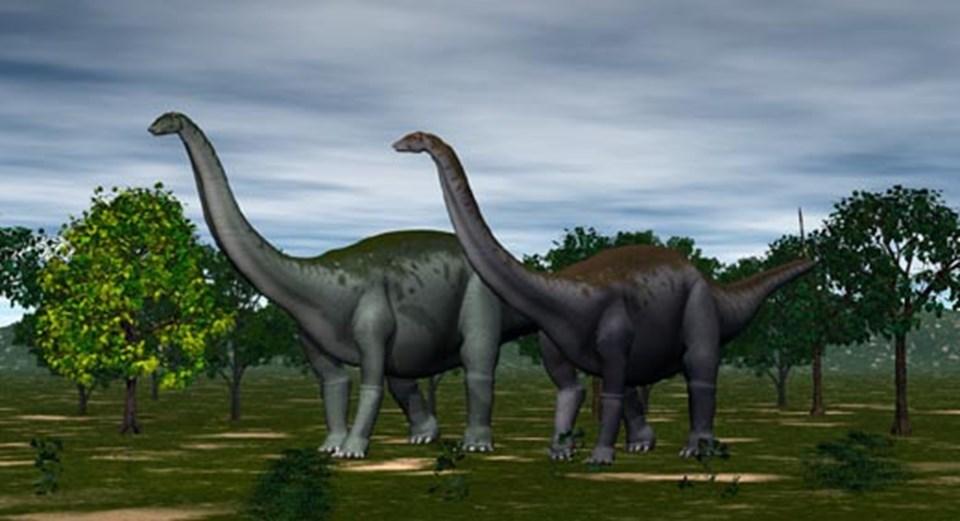 Apatasaruslar 38 değil 18 ton ağırlığındaydı.