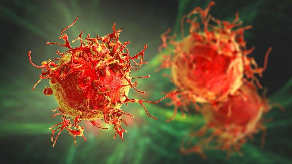 Oxford Üniversitesi: Covid-19 enfeksiyonu, corona virüse karşı uzun süreli koruma sağlamıyor - 4