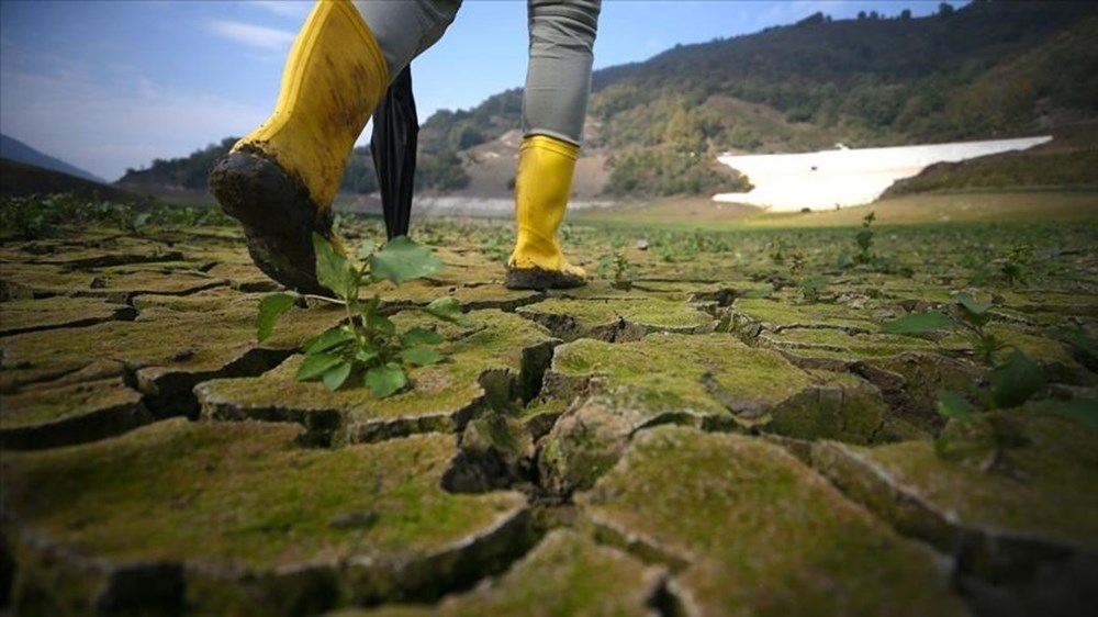 İklim değişikliği: Ölüm her yıl 250 bin artacak | NTV