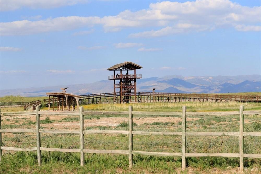 Kayseri'de bozkırın ortasındaki cennet vaha: Sultan Sazlığı - 9
