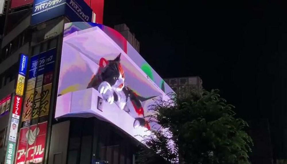 Tokyo'nun yeni misafiri 3 boyutlu kedi: Şehri izliyor ve halkı selamlıyor - 5