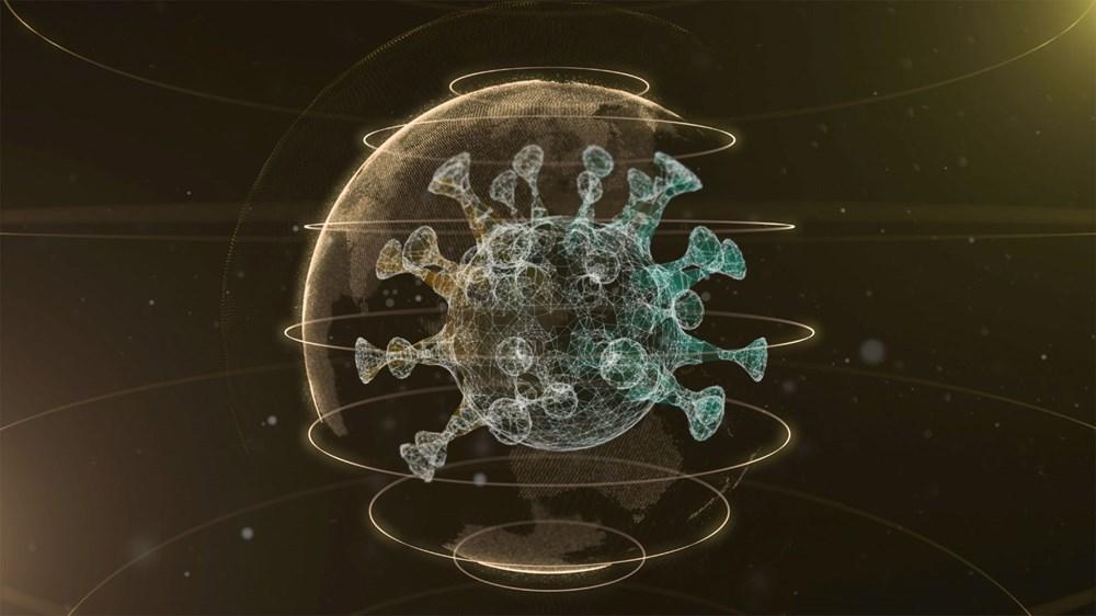 Dünyayı endişelendiren beş corona virüs mutasyonunun arasında hangi farklar var? - 10