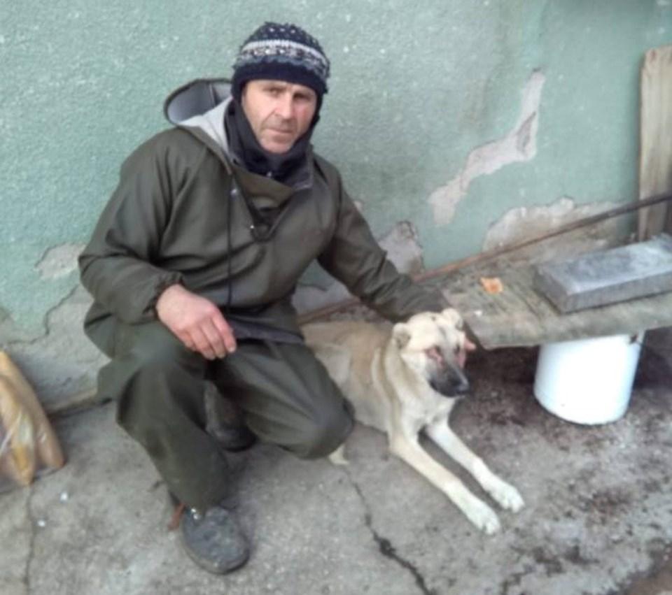 Mustafa Yar'ın beslediği sokak köpeği gözleri oyulmuş halde bulundu.