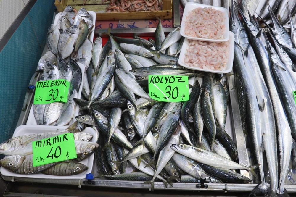 Müsilaj balıklarda zehir etkisi yaratır mı? Uzmanı yanıtladı - 2