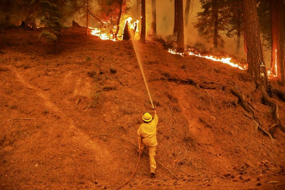 ABD'nin Kaliforniya eyaletinde orman yangınlarıyla mücadele büyüyor: 50 binden fazla evin elektriği kesildi - 10