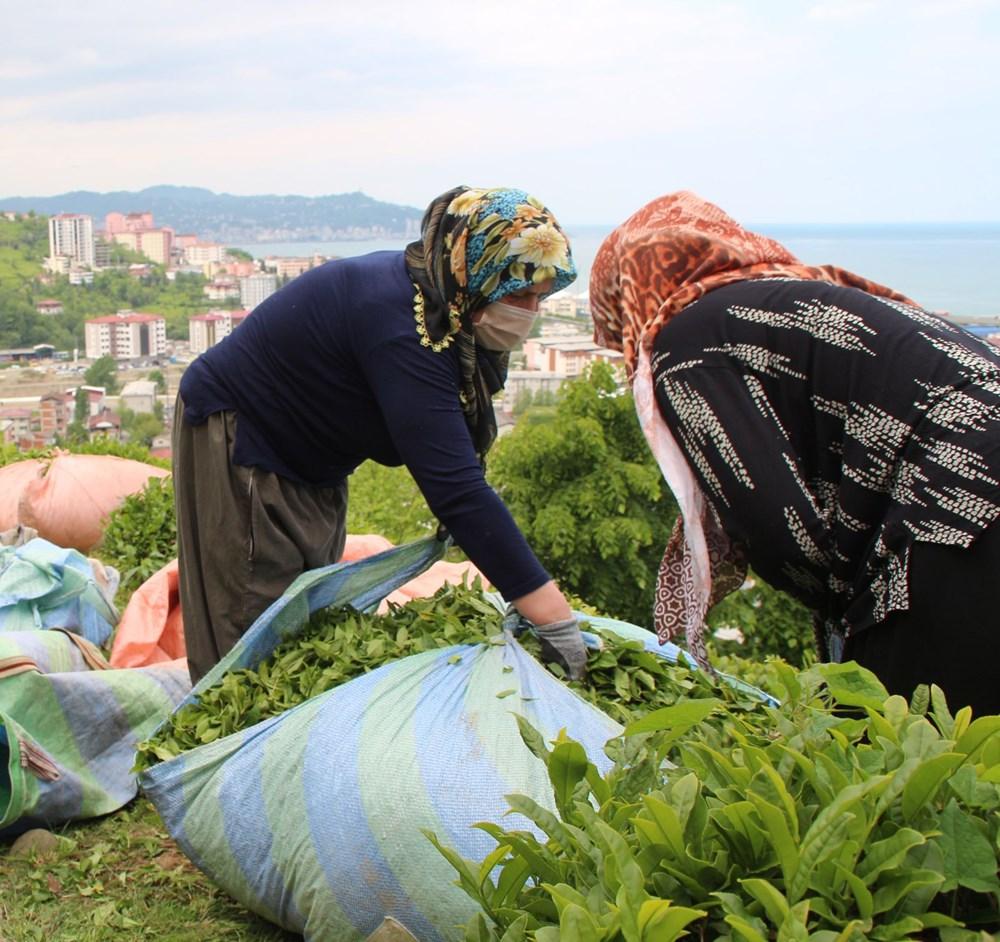 Çay göçü ile Rize'ye giden 30 bin kişiye validen uyarı - 4