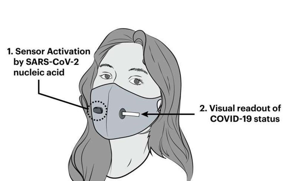 Harvard Üniversitesi ve MIT'den bilim insanları, Covid-19'u tespit edebilen maske geliştirdi - 6