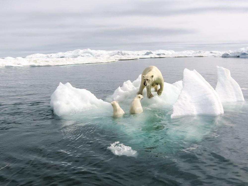 NASA'dan enerji dengesizliği uyarısı: Küresel ısınma nedeniyle Dünya, iki kat daha fazla radyasyon ve ısıyı hapsediyor - 5