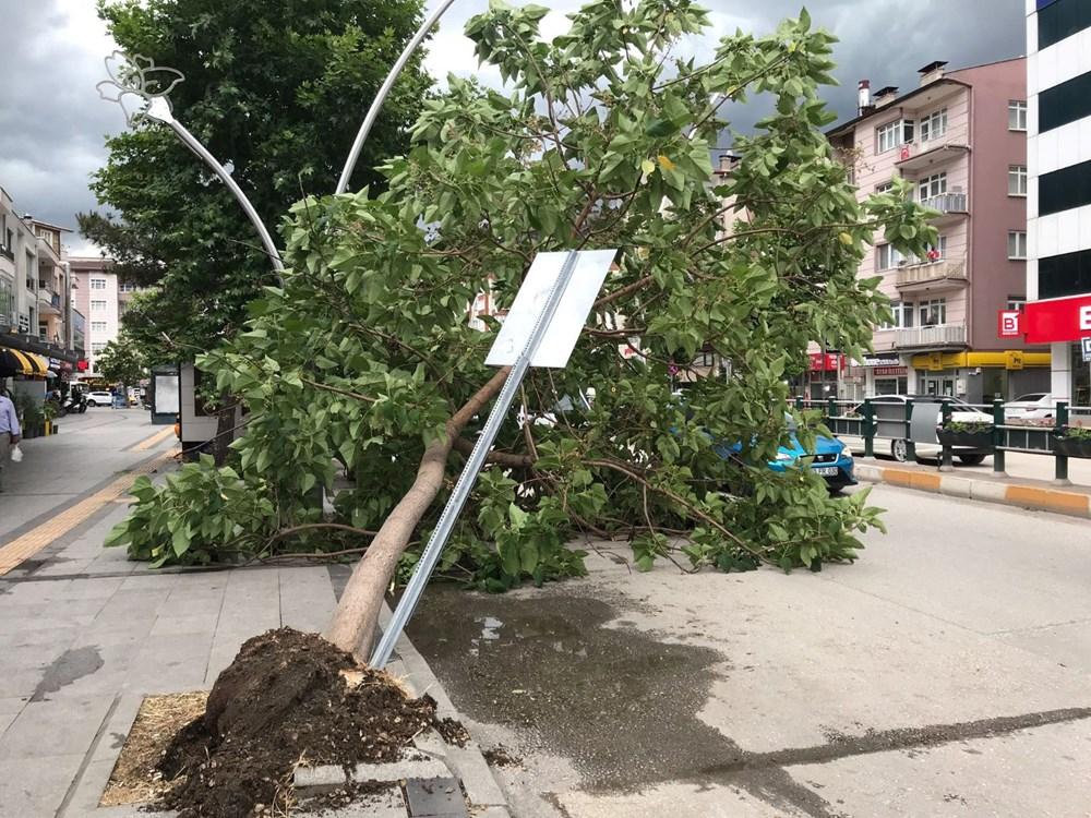 Tokat'ta şiddetli rüzgar: Çatılar uçtu, ağaçlar devrildi - 2