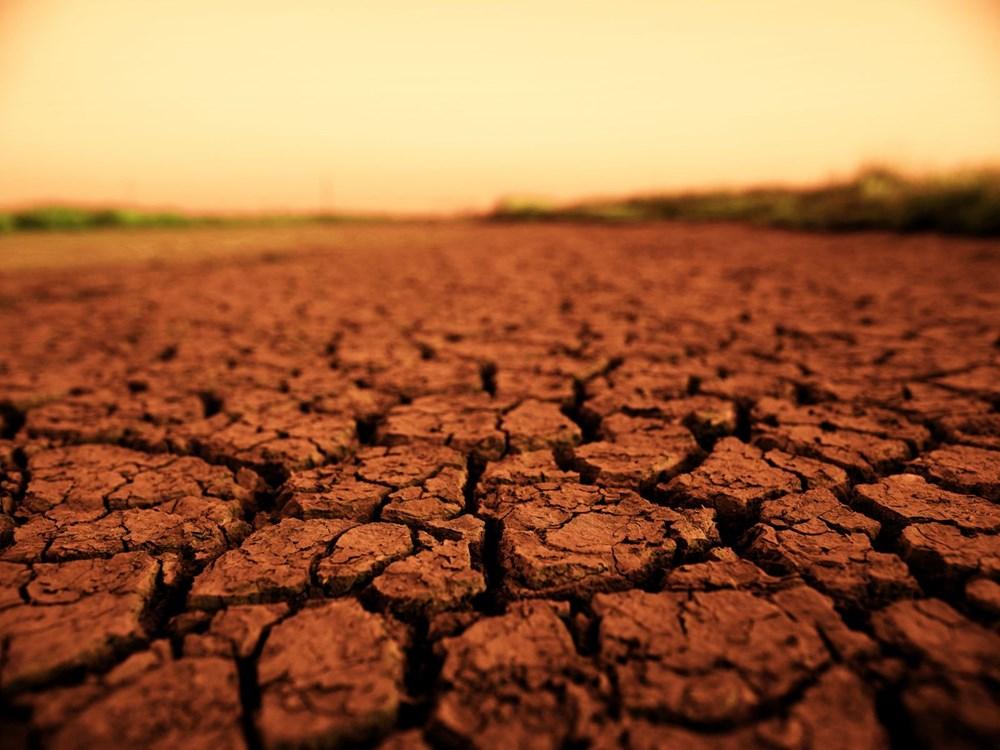 """""""NASA, Dünya'daki mikropları Mars'a taşıdı"""": Kızıl Gezegen tehlikede mi? - 1"""