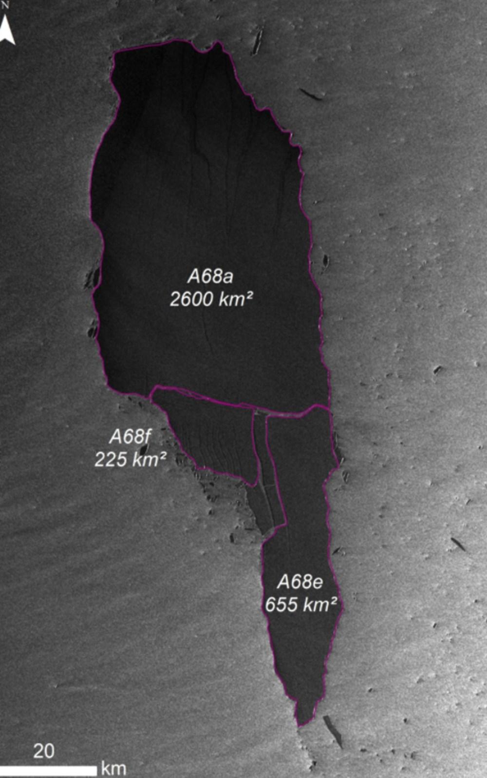 Dünyanın en büyük buzdağı parçalanmaya devam ediyor: Milyonlarca penguen ve deniz canlısı tehdit altında - 4