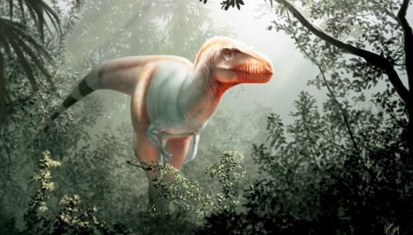 Kanada'da 11 milyon yıllık 'ölüm meleği' fosili bulundu