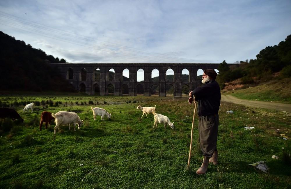 Balıkların yüzdüğü baraj, koyunlara kaldı - 15