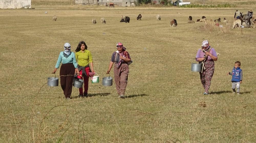 Küresel ısınma Türkiye'yi nasıl etkiliyor? Yüksekova'da son 50 yılın en kurak dönemi - 6