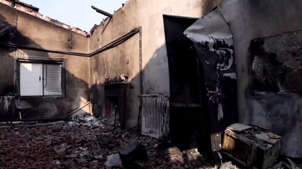 Akdeniz alev aldı: Yunanistan ve İtalya'da orman yangınları sürüyor - 49