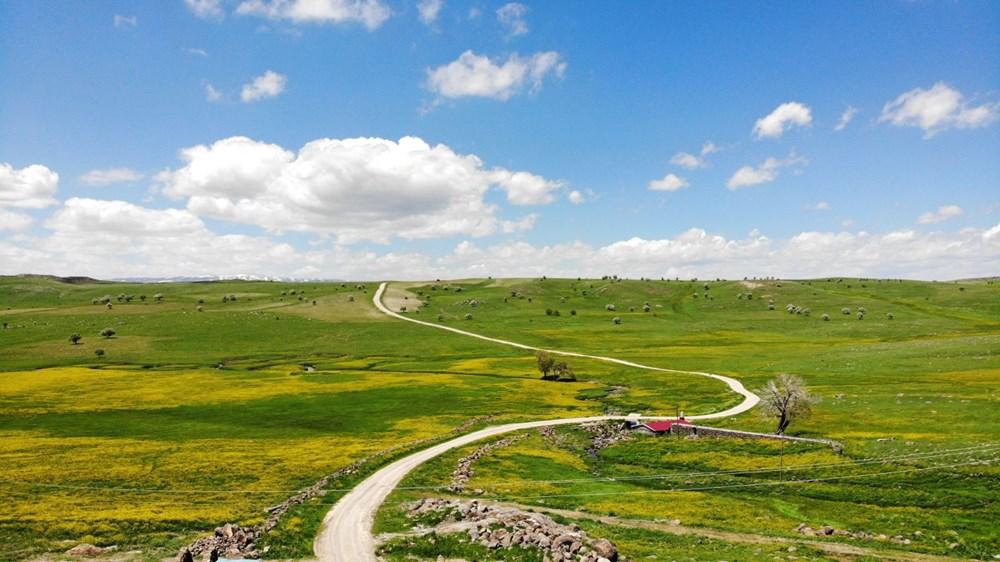 Muş'ta Hamurpet Gölleri görenleri doğasıyla mest ediyor - 12