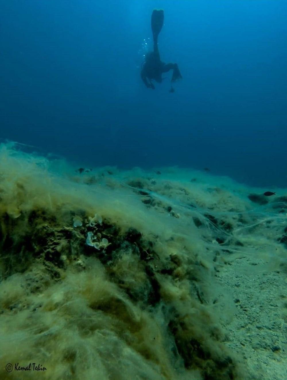 Mersin sahilleri müsilaj tehlikesi altında - 1