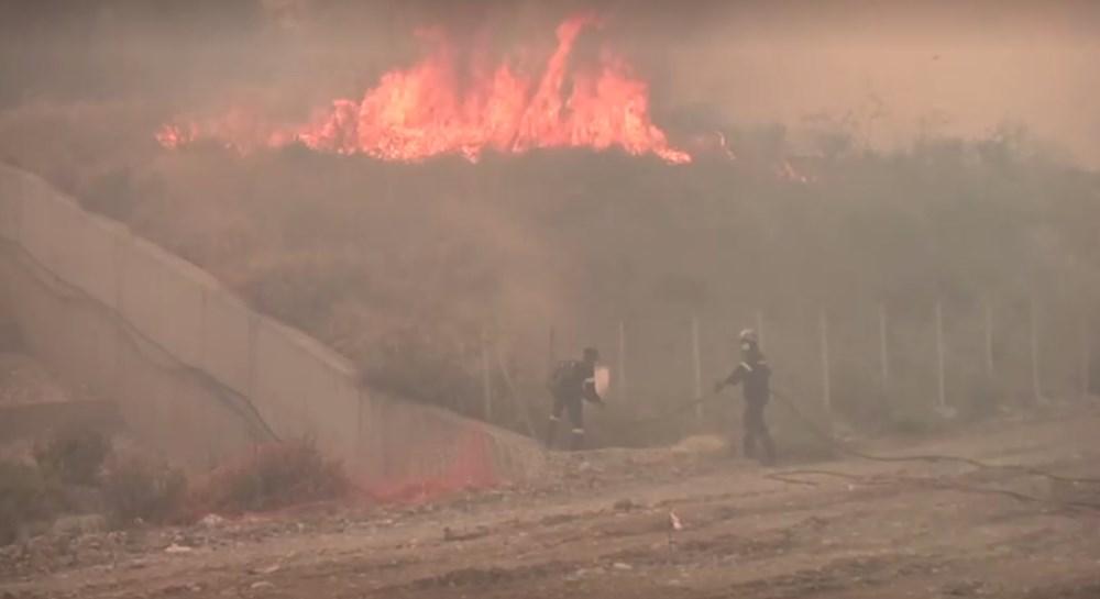 Akdeniz alev aldı: Yunanistan ve İtalya'da orman yangınları sürüyor - 56
