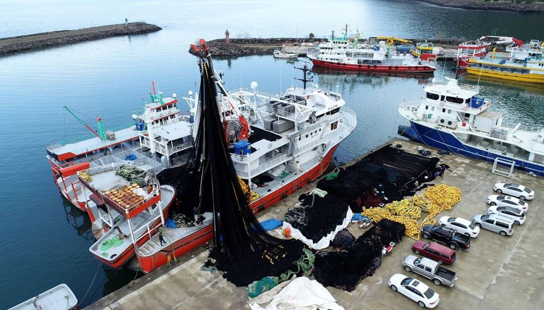 Av sezonu sona eriyor: Balıkçılar ağlarını erken topladı thumbnail