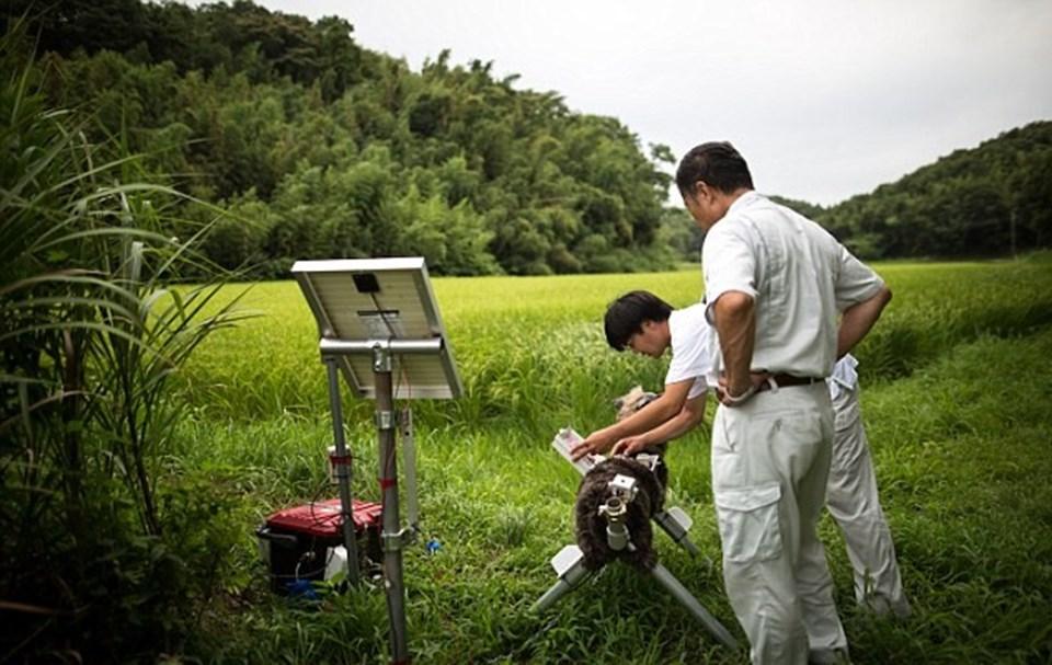 5 bin dolar fiyat etiketine sahip olan robotlar güneş enerjisi ile şarj ediliyor.