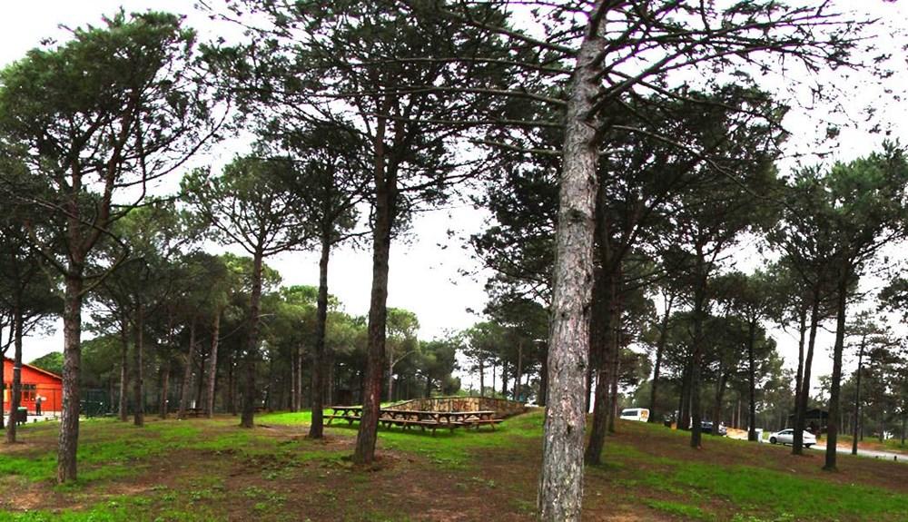 İstanbul'un Tabiat Parkları (İstanbul'daki tabiat parklarının listesi ve isimleri) - 25