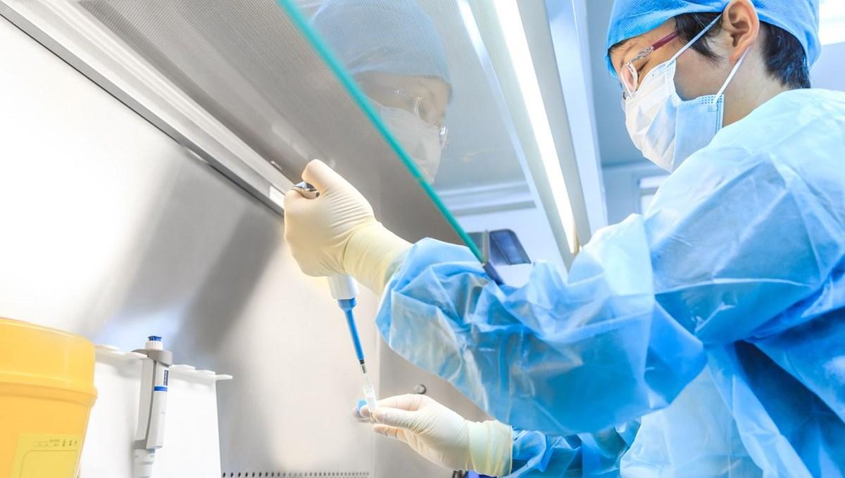 WSJ: ABD'nin gizli Covid raporu, virüsün Wuhan laboratuvarından sızmış olabileceğini gösteriyor