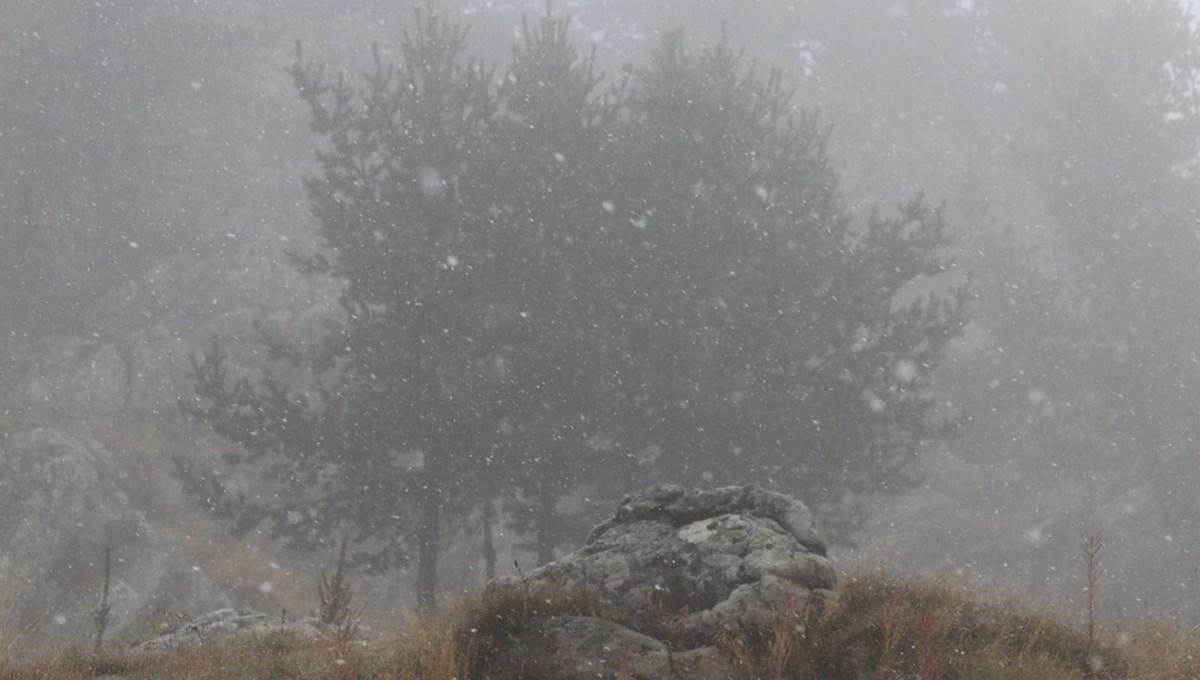 Kartalkaya ve Uludağ'da kar yağışı başladı