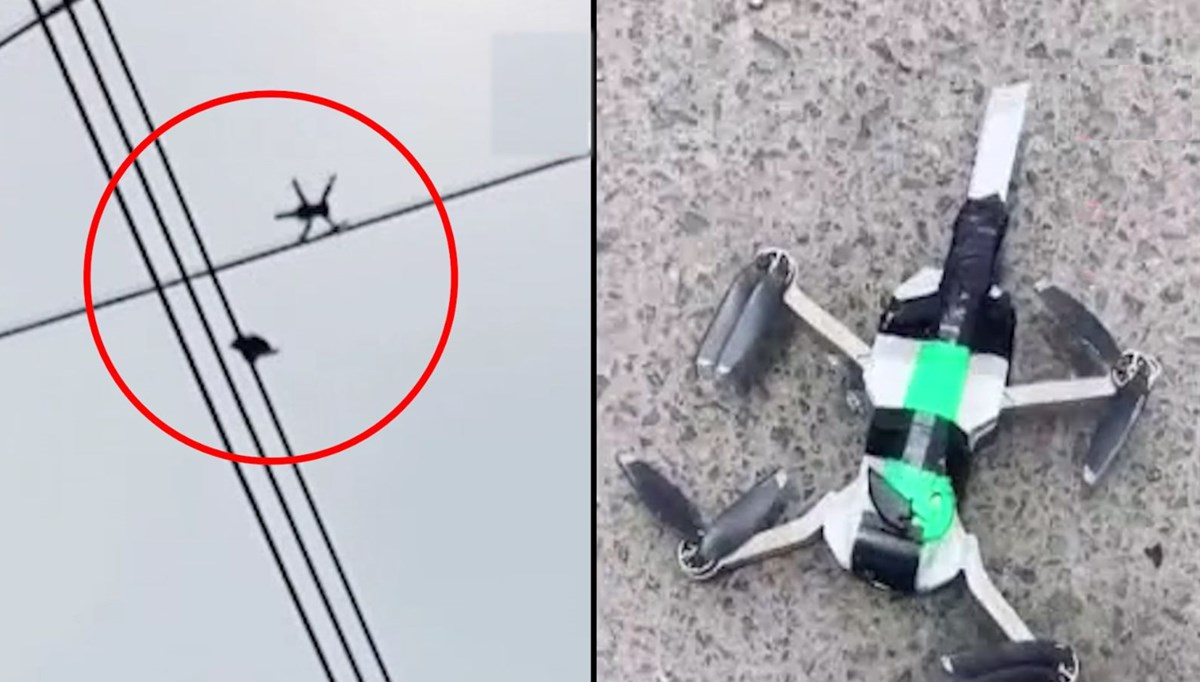 Bıçak bağlanan drone ile güvercin kurtardılar