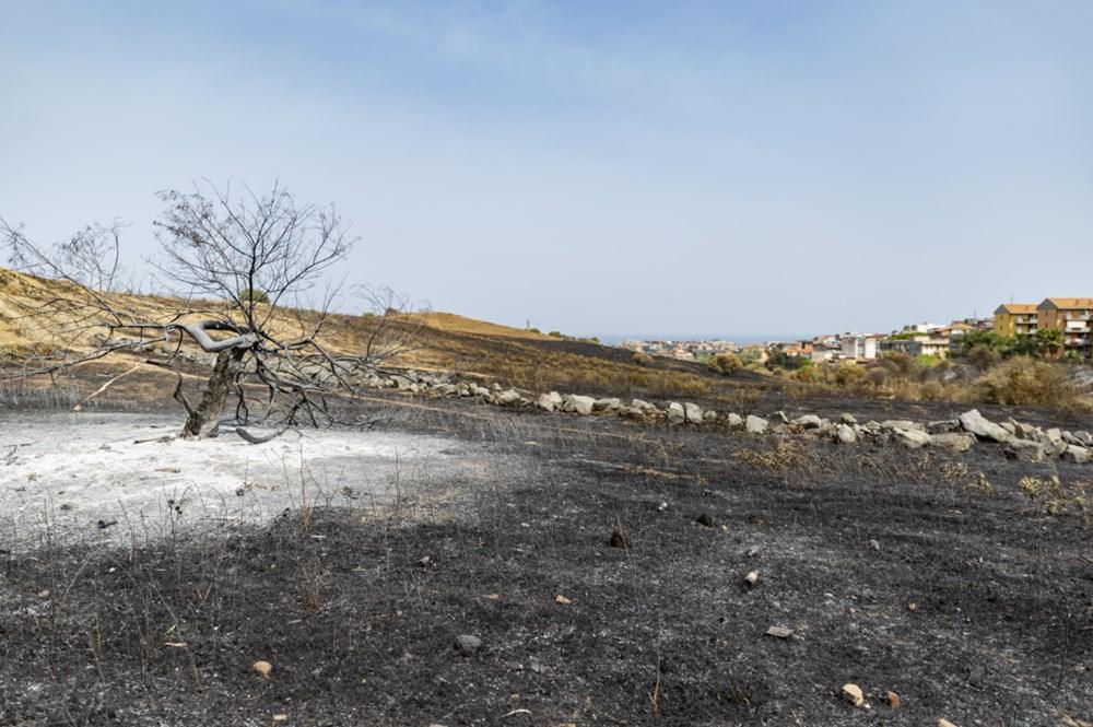 Akdeniz alev aldı: Yunanistan ve İtalya'da orman yangınları sürüyor - 14