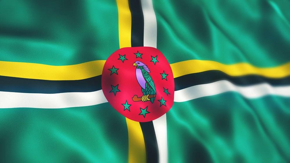Dünya bayrakları hakkında ilginç gerçekler - 8