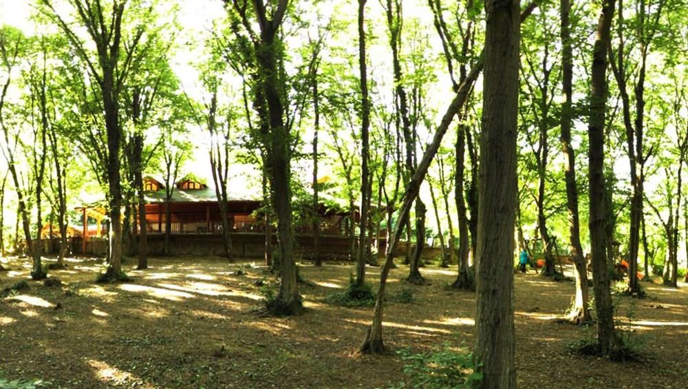 İstanbul'un Tabiat Parkları (İstanbul'daki tabiat parklarının listesi ve isimleri) - 12