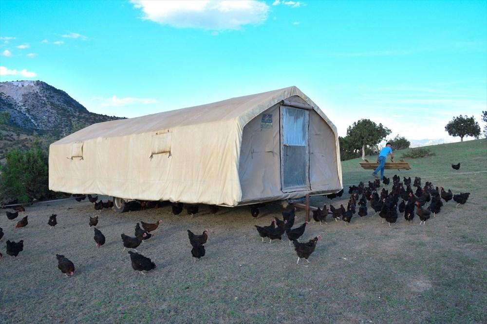 Mobil kümes: Gezen tavuk yaylaya çıktı - 3