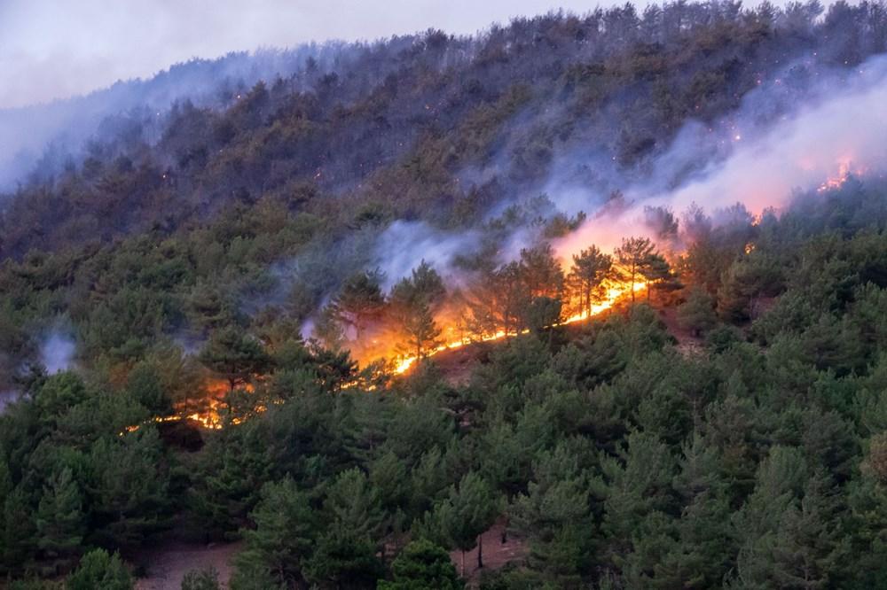 Hatay'da 2 orman yangını - 10