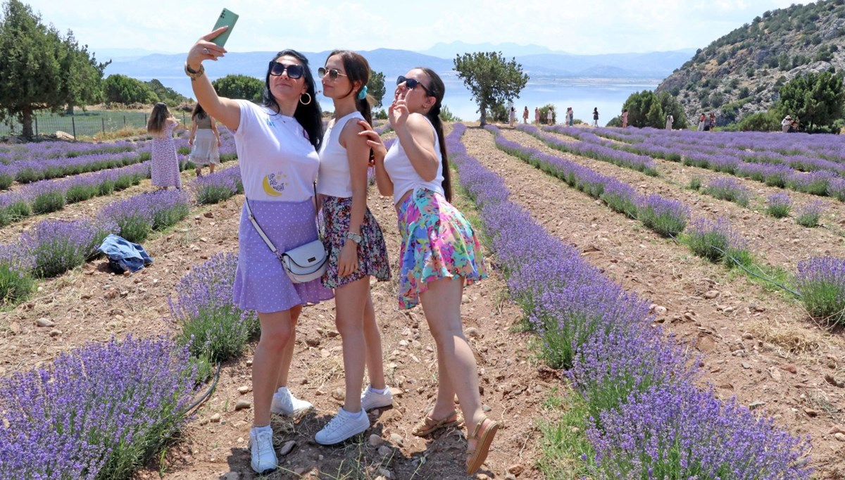 'Purple feast' with a view of Burdur Lake attracts attention