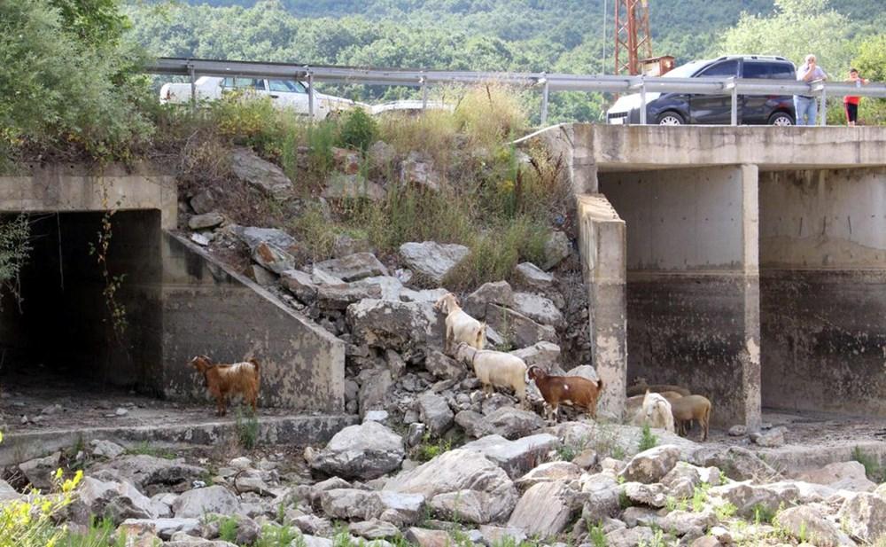 İstanbul'un su ihtiyacını karşılayan Trakya'daki barajlar kurudu - 15